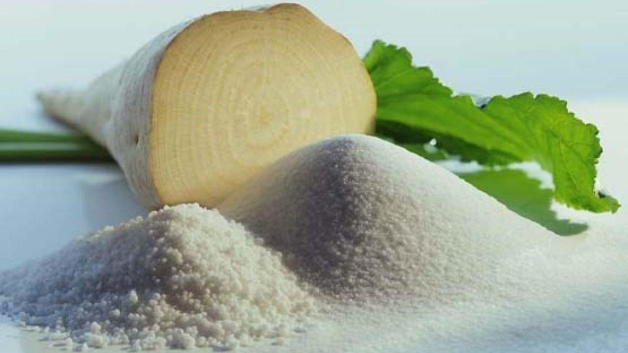 استحصال  یازده هزار تن شکر از محصول چغندرقند درکارخانه قند شرکت صنعتی و کشاورزی شیرین خراسان